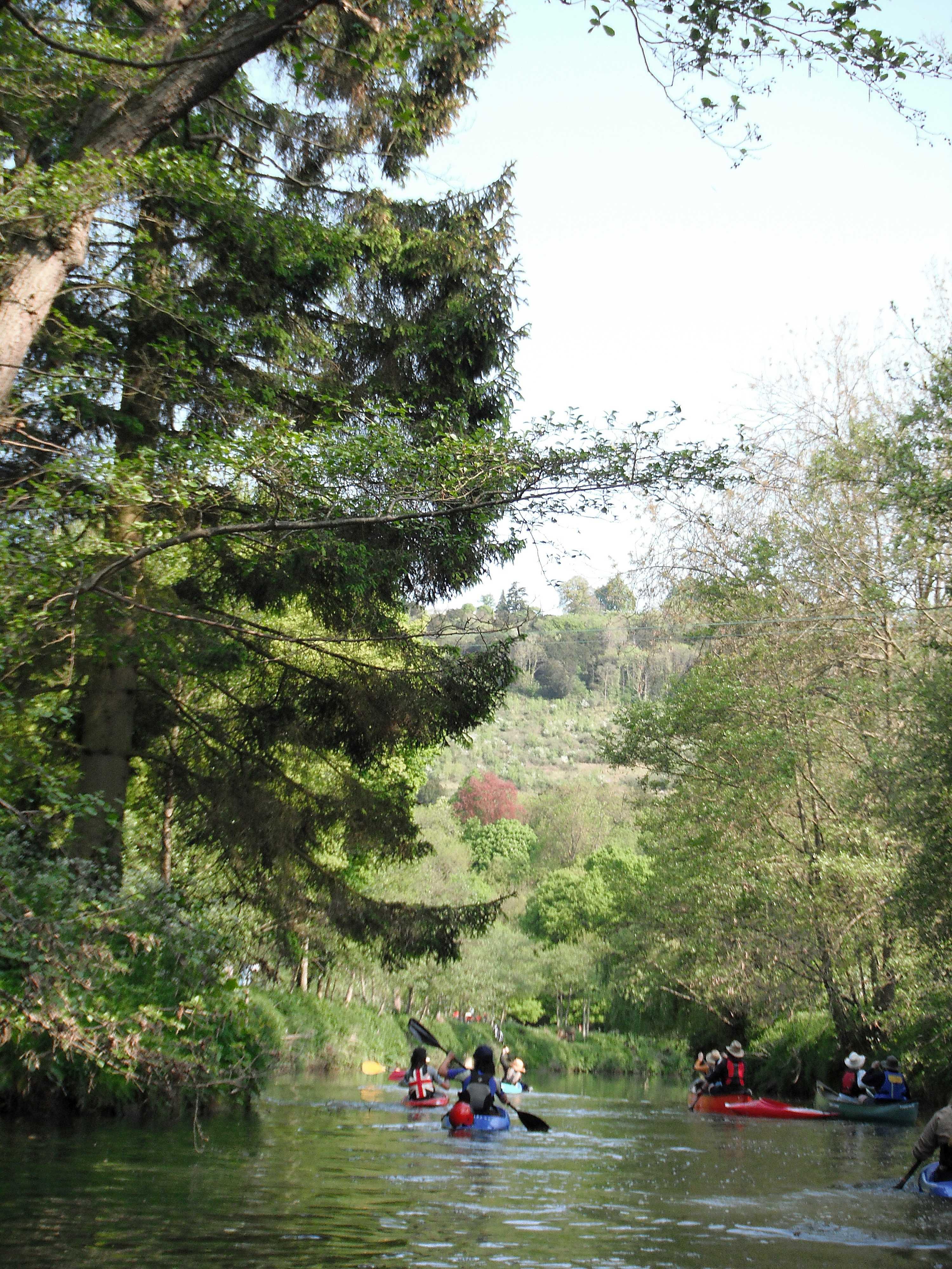 Mole River Trip - 22 March